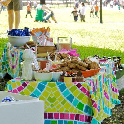 IMG_4076 - Version 22011-05-21bloggers-picnic-boston-common--2011 © Penny Cherubino© 2011 Penny Cherubino