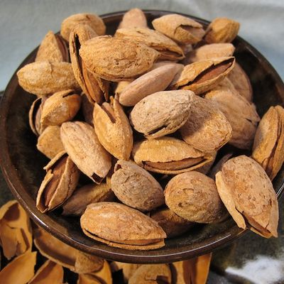 IMG_0231 - Version 22011-07-03fastachi-almonds-roasted- ©2011 Penny Cherubino© 2011 Penny Cherubino