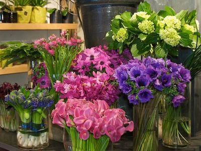Winston-flowers-valentine's-day- 02-03-11   044 copy2011-02-03-flowers-mothers-day-winston-©2011 Penny Cherubino© 2011 Penny Cherubino