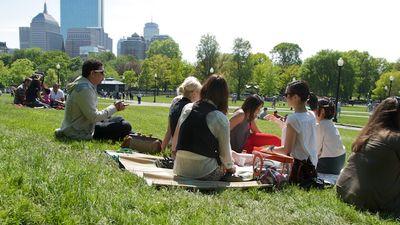 IMG_4162 - Version 22011-05-21bloggers-picnic-boston-common--2011 © Penny Cherubino© 2011 Penny Cherubino