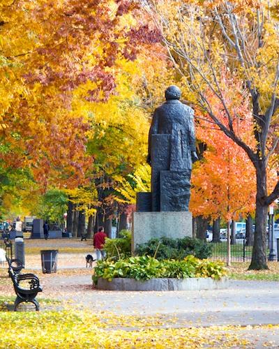 IMG_3613 - Version 22011-11-11-commonwealth-avenue-mall-foliage-© 2011 Penny Cherubino