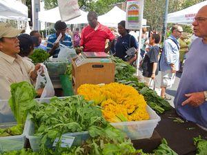 IMG_0815 - Version 22011-08-01-central-square Farmers-market-© 2011 Penny & Ed Cherubino www-Bostonzest-com© 2011 Penny Cherubino