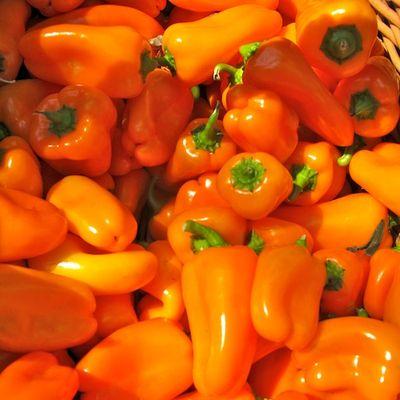 IMG_2115 - Version 22011-09-13-yummy-peppers-super-sweet-atlas-farm© 2011 Penny Cherubino