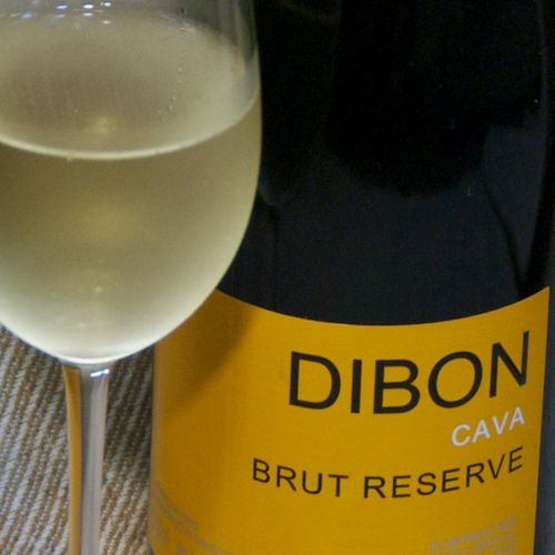 DSC_5267 - Version 22011-12-01-dibon-cava-brut-reserve-sparkler-© 2011 Penny Cherubino