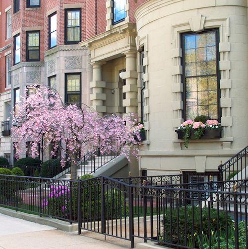 PMC_0476 - Version 32012-04-07-commonwealth-avenue-boston-garden-architecture-© 2011 Penny Cherubino
