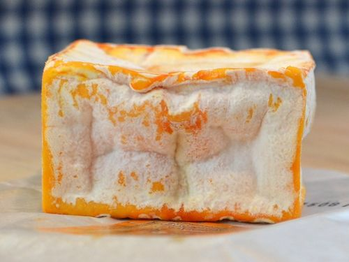 DSC_3419 - Version 22012-04-06-Brebirousse-Argental-Petit-french-sheep-cheese-© 2011 Penny Cherubino