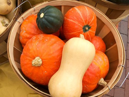 IMG_0127 - Version 22010-09-28-squash- butternut- Kabocha-turban-copley-boston-© 2011 Penny Cherubino