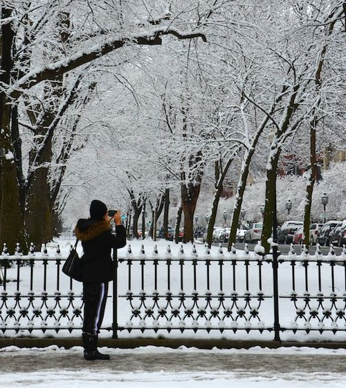 CHE_1225 - Version 22013-01-16-snow scene comm ave-mallphotographer-© 2011 Penny Cherubino