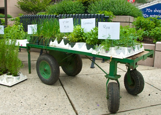 2011052011-05-26-153847-(market-scene-boston-copley-prudential)-(herbs-gilson)