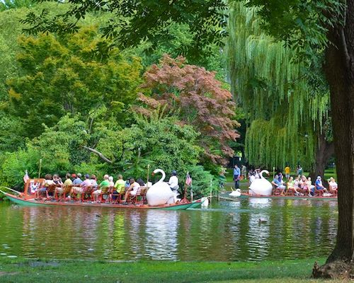 DSC_7744 - Version 22012-09-02-swan-boat-boston-public-garden-© 2011 Penny Cherubino