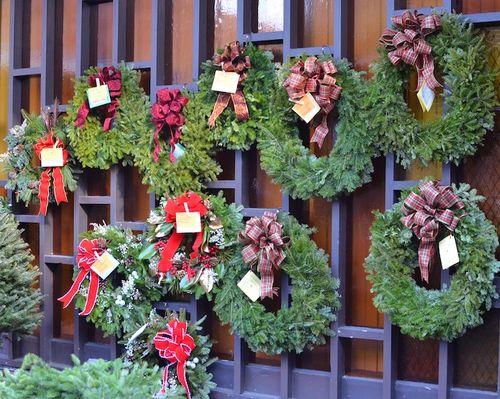 DSC_0818 - Version 22012-12-03-holiday-wreaths-garden-club-of the-Back Bay-© 2011 Penny Cherubino