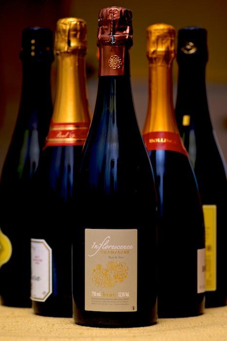 CHE_0033 - Version 22012-12-29-bouchard-inflorscence-champagne-© 2011 Penny Cherubino