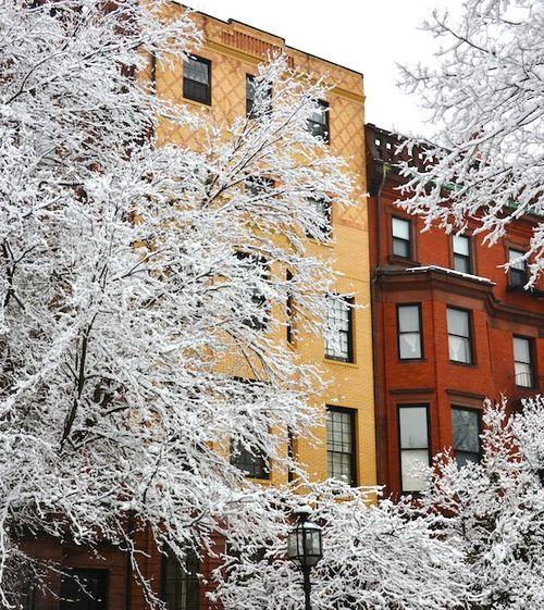 CHE_1129 - Version 22013-01-16-snow scene comm ave-© 2011 Penny Cherubino (1)