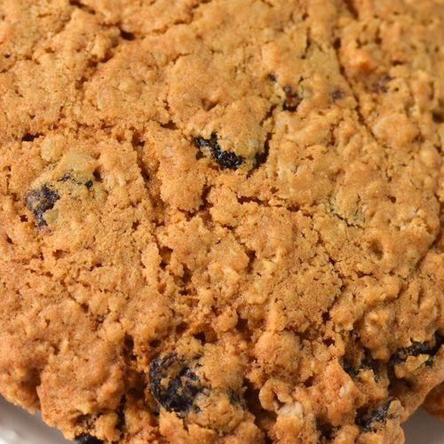DSC_9538 - Version 22012-10-26-oatmeal-raisin-cookie-forzen-© 2011 Penny Cherubino