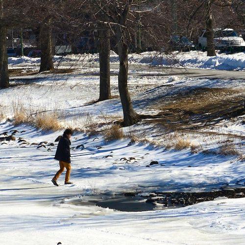 CHE_1915 - Version 22013-02-18-thin-ice-unsafe-frozen-river-© 2011 Penny Cherubino