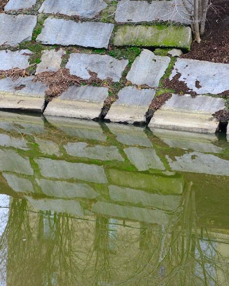 CHE_2302 - Version 22013-02-28-green-muddy-river-Boston-ma-© 2011 Penny Cherubino