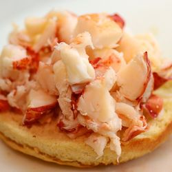 CHE_7471 - Version 22013-05-27-lobster-rolls-no-mayo-RI-CT-style-© 2011 Penny Cherubino (1)