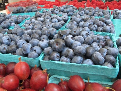 IMG_6651 - Version 42013-07-23-blueberries-farmers-market-© 2011 Penny Cherubino