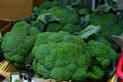 CHE_8173 - Version 22013-06-21-broccoli-© 2011 Penny Cherubino