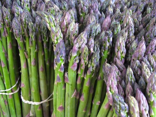 2011052011-05-28-153847-(market-scene-boston-copley-prudential)-(spring-brook-farm-asparagus)