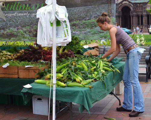 DSC_6001 - Version 22013-07-02-copley-farmers-market-corn-stillman-© 2011 Penny Cherubino