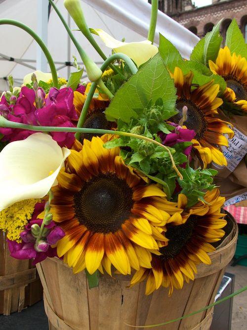 IMG_6535 - Version 22013-07-02-copley-farmers-market-flowers-mixed bouquet-atlas-farm-© 2011 Penny Cherubino