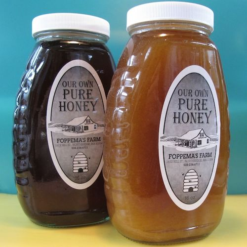IMG_6958 - Version 22013-10-21-honey-local-foppama's farm-© 2011 Penny Cherubino