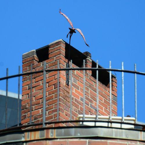 PC2_0625 - Version 22013-09-28-atd-south-end-bird-© 2011 Penny Cherubino