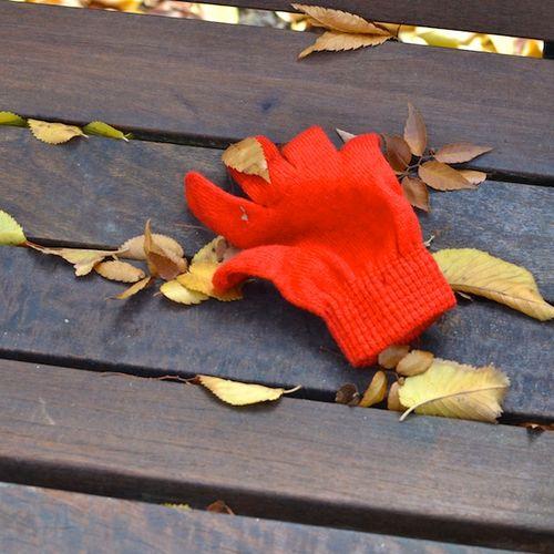 DSC_0005 - Version 22013-11-10-lost-glove-bench-commonwealth-avenue-mall-© 2011 Penny Cherubino