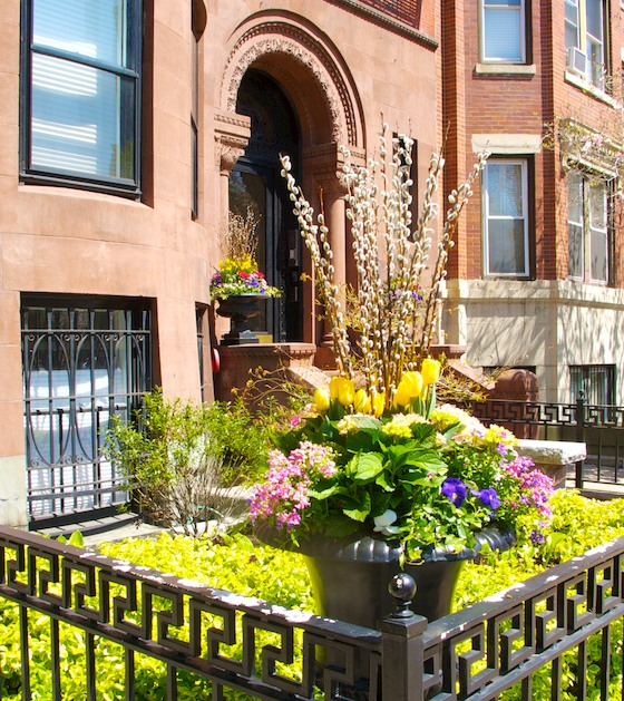 IMG_7391 - Version 22014-05-02-back-bay-boston-brownstone-flowers-garden-© 2011 Penny Cherubino