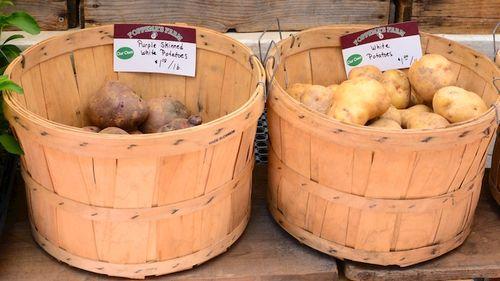 PC2_3532 - Version 22014-05-20-potatoes-Foppema's Farm-copley-square-farmer-market-© 2011 Penny Cherubino