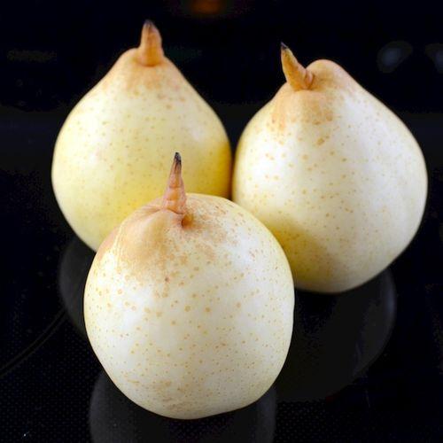 DSC_1045 - Version 22014-02-11-ya-pears-© 2011 Penny Cherubino