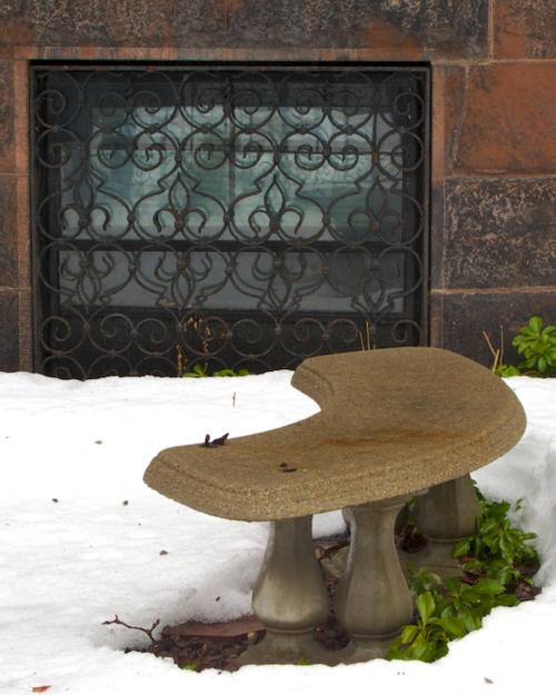 IMG_7235 - Version 22014-02-21-cars-boston-snow-melt-© 2011 Penny Cherubino