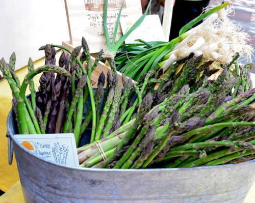 PC2_3544 - Version 22014-05-20-Asparagus-scallions- seinna Farm-copley-square-farmer-market-© 2011 Penny Cherubino (1)