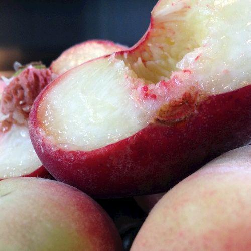 IMG_0916 - Version 22014-08-23-saturn-peaches-foppama's-farm-ripe-© 2011 Penny Cherubino