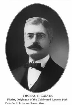 Thomas Galvin