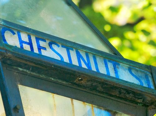 PMC_8434 - Version 22014-07-12bhr atd-chestnut sign- clue© 2011 Penny Cherubino