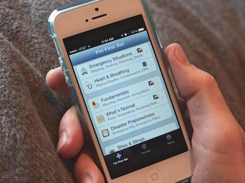 DSC_3592 - Version 22014-08-13pet-first-aid-app-iphone-© 2011 Penny Cherubino (1) copy