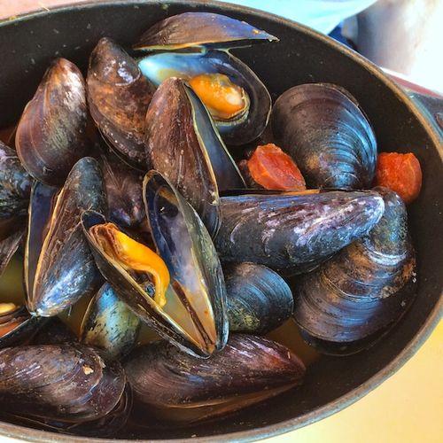 3 - Version 42014-08-14-mussels-la voile-© 2011 Penny Cherubino