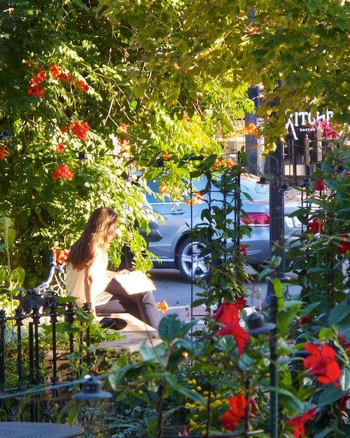IMG_7599 - Version 22014-09-05-view-from-hamersley'-bar--© 2011 Penny Cherubino