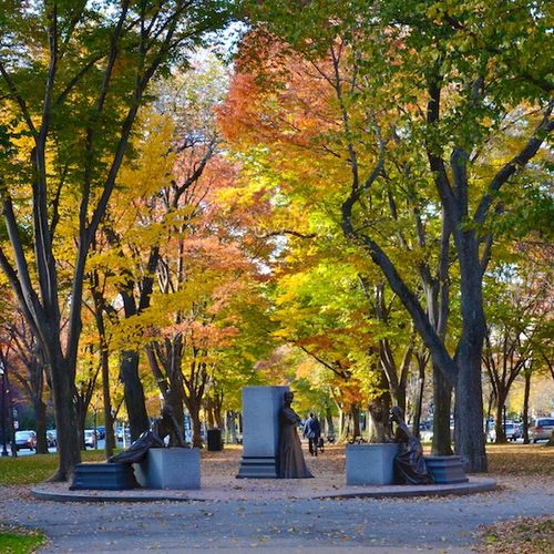 DSC_4708 - Version 22014-11-11boston-November-foliage-commonwealth-avenue-mall-© 2014 Penny Cherubino