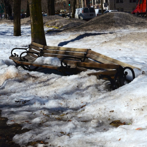 DSC_5216 - Version 22015-03-12-brokens-bench-commonwealth-avenue-mall-© 2014 Penny Cherubino