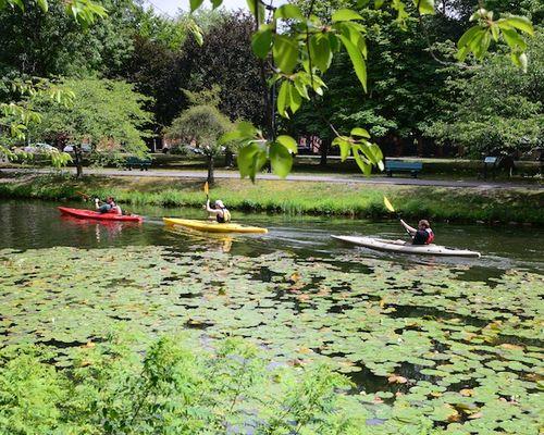 CHE_8438 - Version 22015-08-09-Esplande-canoeway-kayaks-storrow-drive-© 2014 Penny Cherubino