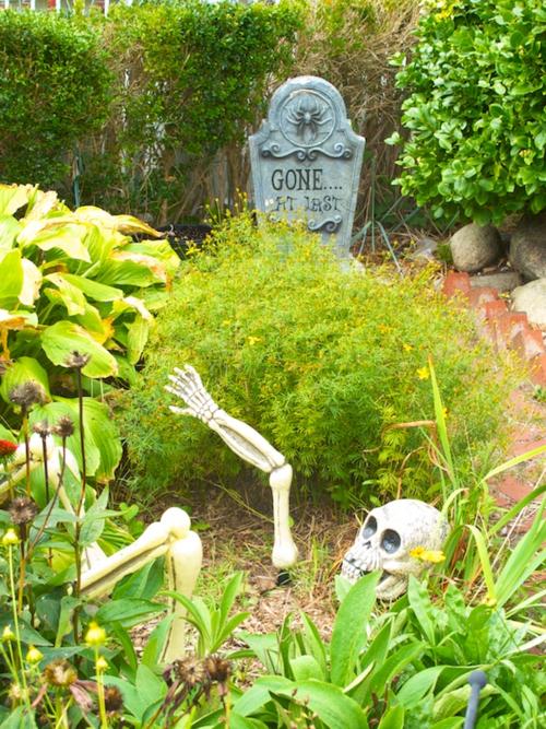 IMG_8640 - Version 22015-10-05Halloween-garden- provinctown-© 2014 Penny Cherubino