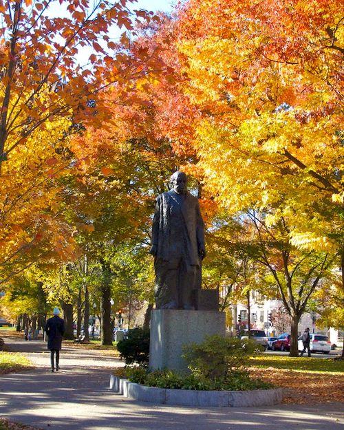 IMG_7749 - Version 22014-11-15sarmento-foliage- November-15th-boston-© 2014 Penny Cherubino