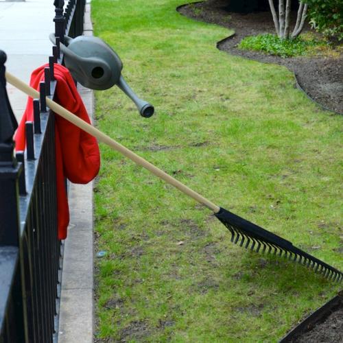 DSC_5588 - Version 22015-04-27-back-bay-garden-clean-out-© 2014 Penny Cherubino