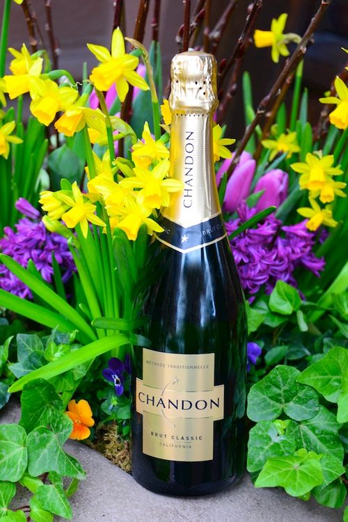 CHE_9944 - Version 22016-03-24Chandon-brut-sparkler© 2014 Penny Cherubino