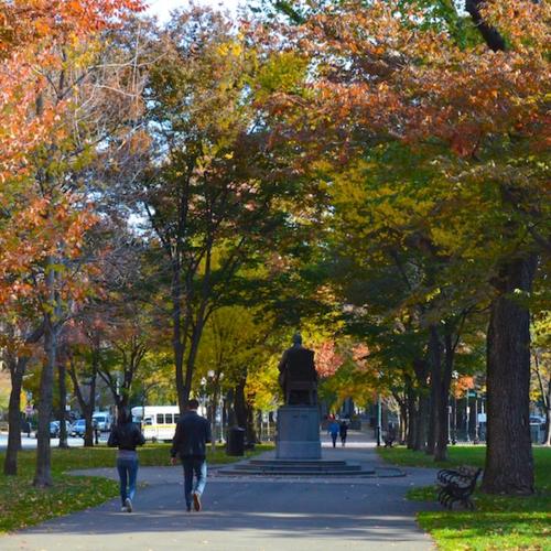 DSC_4690 - Version 22014-11-09boston-November-foliage-commonwealth-avenue-mall-© 2014 Penny Cherubino