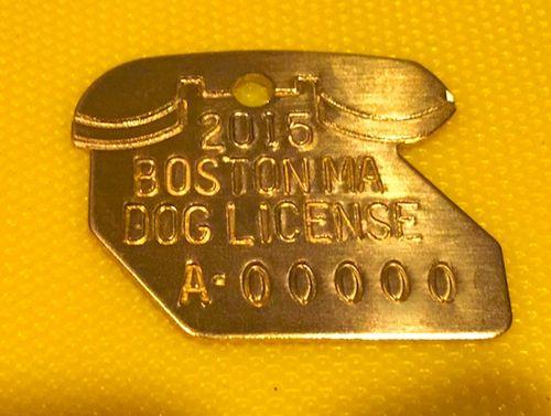 IMG_1683 - Version 22015-03-09-boston-2015-dog-license-© 2014 Penny Cherubino