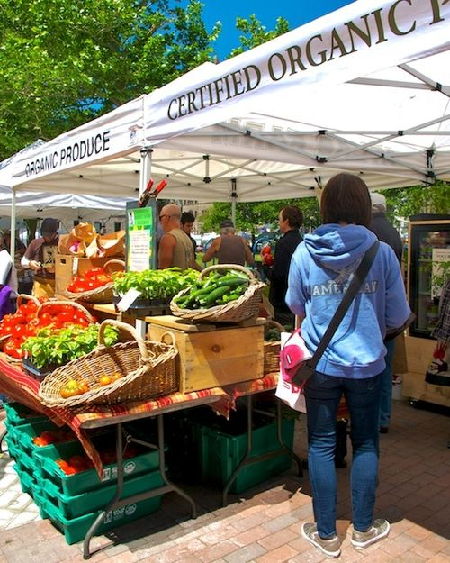 IMG_8371 - Version 32015-06-05-FARMERS-MARKET-Copley-Square-Boston-© 2014 Penny Cherubino